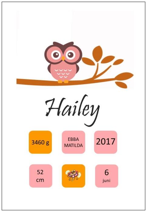Namntavla med uggla på en gren, rosa, namntavlor, doptavla, doptavlor, barntavla, barntavlor, dop, födelse, gåva, present, barnrum, inredning, interior, interiör, grafisk, design, print, poster , tavla, ruff & stuff, ruff o stuff, ruffostuff