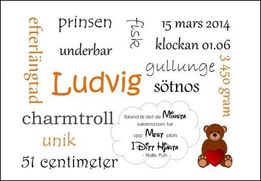 Namntavla Huller om buller tavla med dina unika ord, nalle, namntavlor, doptavla, doptavlor, barntavla, barntavlor, dop, födelse, gåva, present, barnrum, inredning, interior, interiör, grafisk, design, print, poster , tavla, ruff & stuff, ruff o stuff, ruffostuff